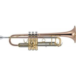 J.Michael trompeta TR450 Sib