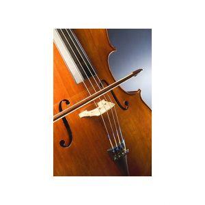 Violoncello Hans Joseph 1/4. SCES-2014