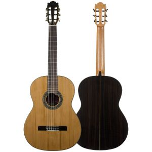 Guitarra Martinez ES06C