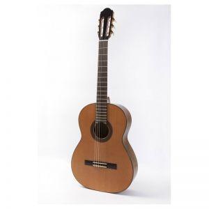 Guitarra clásica amplificada Raimundo 120E