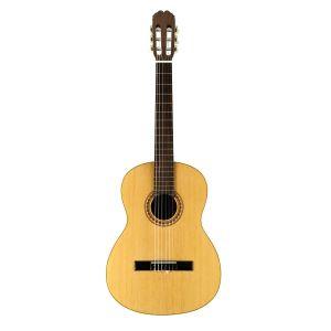 Guitarra Manuel Rodriguez C10