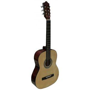 Guitarra Nueva Rocio 10