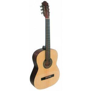 Guitarra Rocio 20