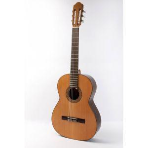Guitarra Raimundo 118C