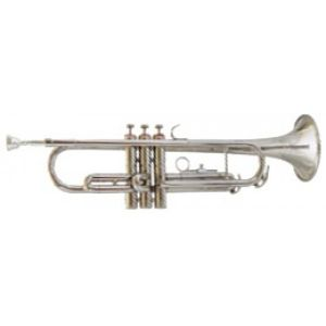 Trompeta Amadeus TP807N